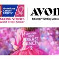 American Cancer Society's Making Strides Walk, Sponsored by Avon