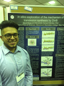 Elevit Perez presents his work with Prof. Sampoli at the Undergraduate Research Symposium in the Chemical and Biological Sciences at the University of Maryland-Baltimore County.