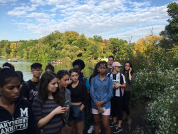 NYC 103 students study native species in Central Park.