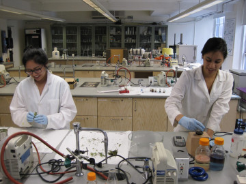 Leri Research Group 2012-13.  Kelsey Villafuerte and Ashley Pirovano.