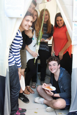 The traditional lulav and less traditional (but no less delicious!) kosher pizza made an appearance in MMC's own sukkah on...